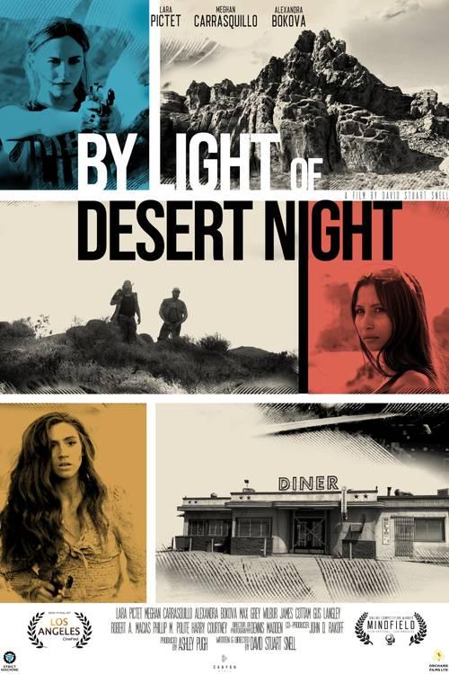 By Light of Desert Night